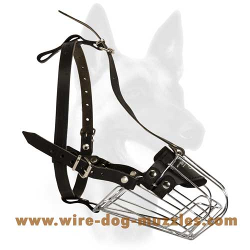 Great Wire Basket Dog Muzzle